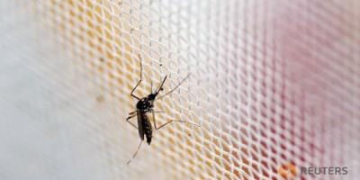 Hàn Quốc xác nhận ca nhiễm virus Zika đầu tiên