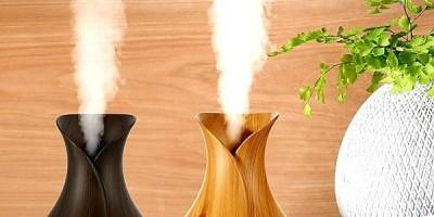 Ngoài tinh dầu  có rất nhiều cách giúp bạn đuổi muỗi phòng sốt xuất huyết