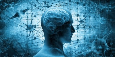 6 bí quyết và 3 bài tập duy trì não bộ khỏe mạnh